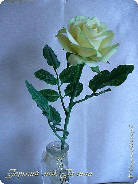Доброго времени жители Страны Мастеров! Всё так же продолжаю учиться лепке цветов из полимерной глины. Что получается лучше, а что то не очень))  Роза примерно 45 см высота, диаметр цветка около 10 см. Не шедевр, но симпатичная) фото 6