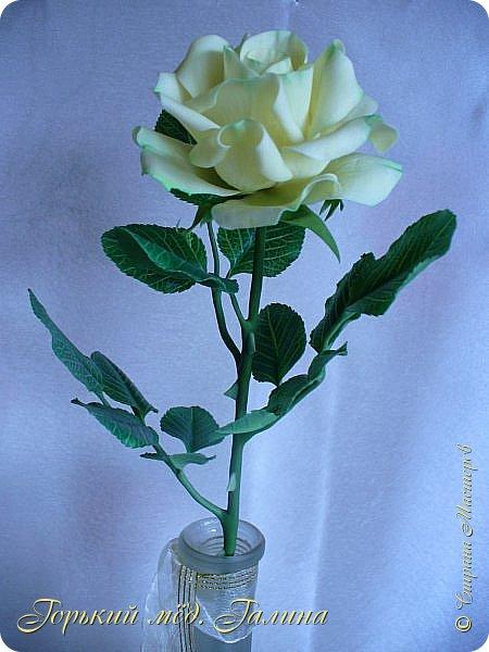 Доброго времени жители Страны Мастеров! Всё так же продолжаю учиться лепке цветов из полимерной глины. Что получается лучше, а что то не очень))  Роза примерно 45 см высота, диаметр цветка около 10 см. Не шедевр, но симпатичная) фото 8