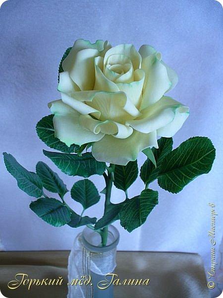 Доброго времени жители Страны Мастеров! Всё так же продолжаю учиться лепке цветов из полимерной глины. Что получается лучше, а что то не очень))  Роза примерно 45 см высота, диаметр цветка около 10 см. Не шедевр, но симпатичная) фото 9
