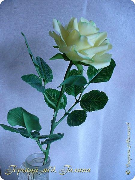Доброго времени жители Страны Мастеров! Всё так же продолжаю учиться лепке цветов из полимерной глины. Что получается лучше, а что то не очень))  Роза примерно 45 см высота, диаметр цветка около 10 см. Не шедевр, но симпатичная) фото 10