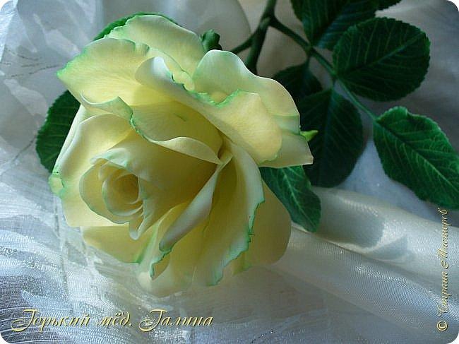 Доброго времени жители Страны Мастеров! Всё так же продолжаю учиться лепке цветов из полимерной глины. Что получается лучше, а что то не очень))  Роза примерно 45 см высота, диаметр цветка около 10 см. Не шедевр, но симпатичная) фото 1
