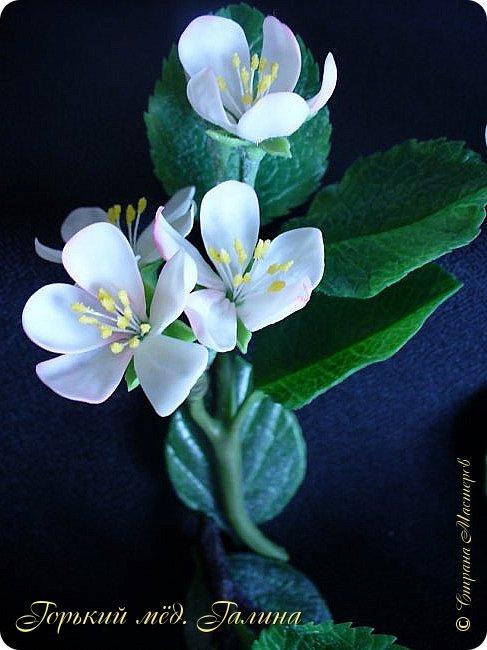 Доброго времени жители Страны Мастеров! Всё так же продолжаю учиться лепке цветов из полимерной глины. Что получается лучше, а что то не очень))  Роза примерно 45 см высота, диаметр цветка около 10 см. Не шедевр, но симпатичная) фото 20