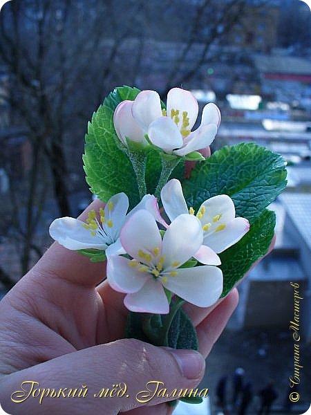 Доброго времени жители Страны Мастеров! Всё так же продолжаю учиться лепке цветов из полимерной глины. Что получается лучше, а что то не очень))  Роза примерно 45 см высота, диаметр цветка около 10 см. Не шедевр, но симпатичная) фото 18