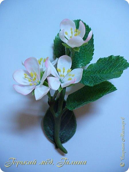 Доброго времени жители Страны Мастеров! Всё так же продолжаю учиться лепке цветов из полимерной глины. Что получается лучше, а что то не очень))  Роза примерно 45 см высота, диаметр цветка около 10 см. Не шедевр, но симпатичная) фото 16