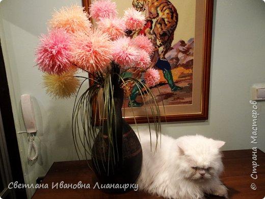 Лет 15 назад я оказалась на выставке, там  увидела эти цветочки и прошла мимо, не обратив на них внимания. Была 100 процентная уверенность, что они живые, подумала, что кому-то подарили живой букет. Прошло  какое-то время  и случайно я узнала, что это были цветы из салфеток.  Как я была удивлена! Через организаторов выставки я узнала адрес мастера. Им оказалась бабушка из дома для престарелых. Договорилась по телефону с директором данного заведения и поехала на встречу с ней. Встретилась и бабуля рассказала свою историю. что благодаря этим цветам она много лет выживала в этом мире, меняла, продавала, дарила, учила... И мне подарила  три цветочка и показала, как их делать. Счастливая я поехала домой и так началась моя история: с тех пор я делаю  и делаю эти цветы,  правда, не продаю их, а дарю. Сейчас же попробую показать вам, и, может быть,  у кого-то из вас начнется своя история  любви к данному цветочку. фото 31