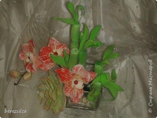 Собрала пробник (фом на бамбук безумного цвета весенней зелени, приглушить так и не смогла)) фото 1