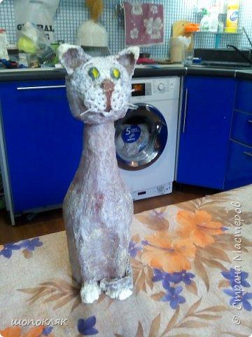 Кот на бутылке фото 1