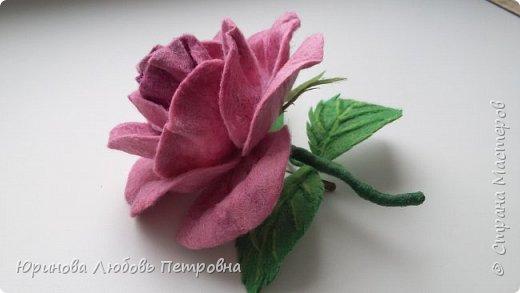 Роза. Брошь. Шерсть. фото 4