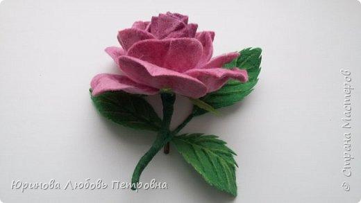 Роза. Брошь. Шерсть. фото 1