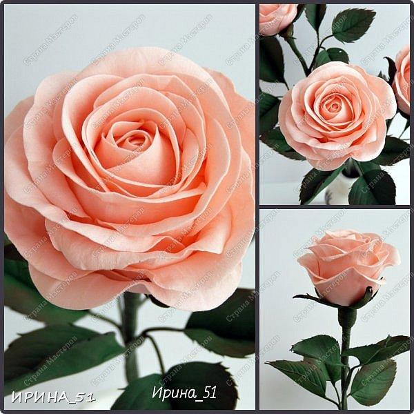 """Приветствую всех жителей Страны Мастеров. Сегодня я к  Вам с очередной порцией цветов из фома.  Без лишних слов приглашаю к просмотру.  Роза  """"Peach Avalanche"""" (Пич Аваланж) фото 13"""