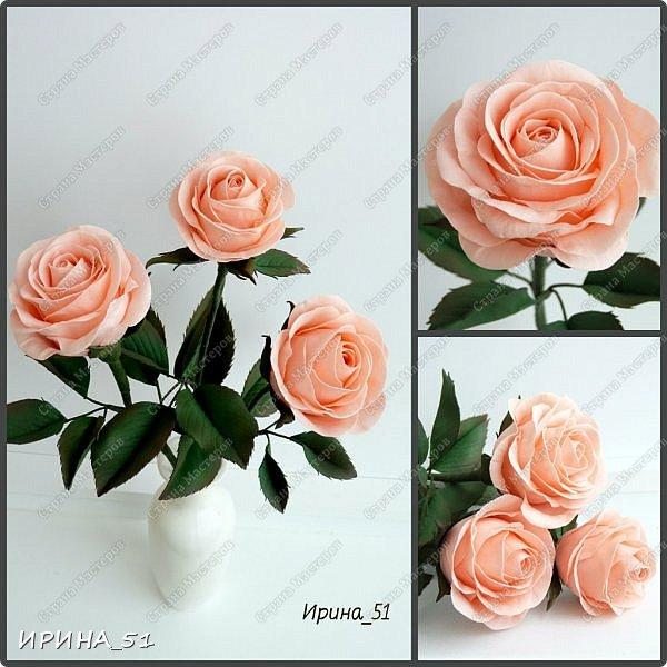 """Приветствую всех жителей Страны Мастеров. Сегодня я к  Вам с очередной порцией цветов из фома.  Без лишних слов приглашаю к просмотру.  Роза  """"Peach Avalanche"""" (Пич Аваланж) фото 15"""