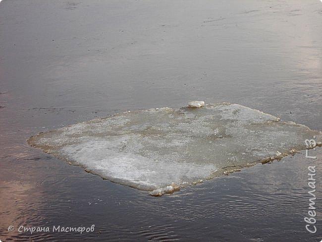 Я живу на Вятке,у нас очень красивая природа.Наш посёлок окружен с двух сторон реками Вятка и Медянка,а с двух сторон лес.У нас красиво в любое время года,вот и сейчас весной всё оживает!Немного опоздала с репортажем,лёд почти прошел,но кое что удалось заснять.Предлагаю просмотреть несколько фото.  фото 5