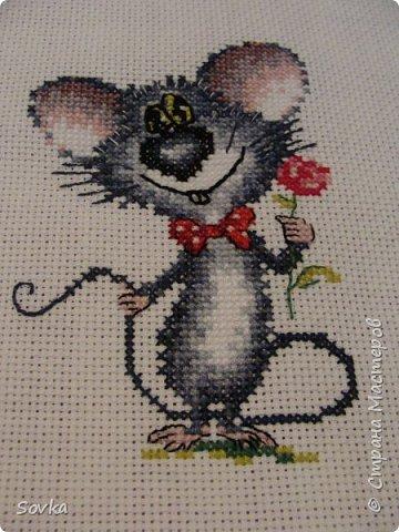 Мышонок - очаровашка.  фото 1