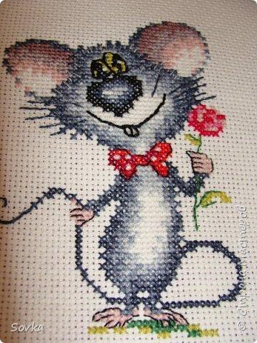 Мышонок - очаровашка.  фото 2