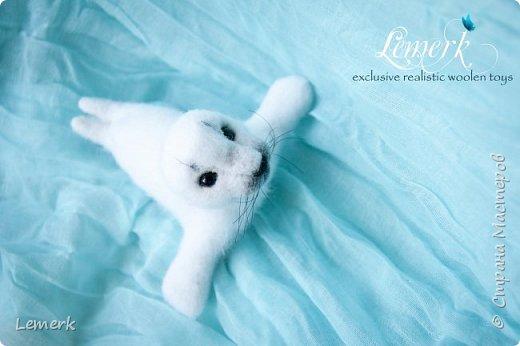 Белек Снежок. Валяная интерьерная игрушка. Тюлененок фото 3