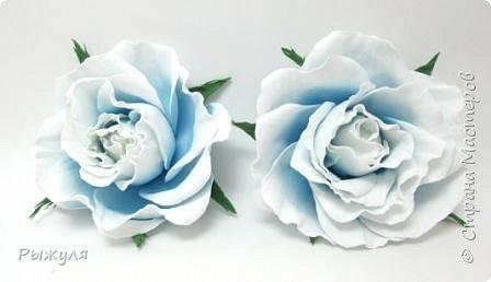 А вот и розы))) Солнышко))) фото 4