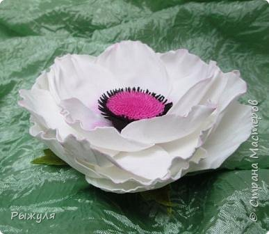 Всем доброго дня!!!  Решила выставить все цветочки сделанные за последнее время)))) одуванчики - заколка и колечко фото 6