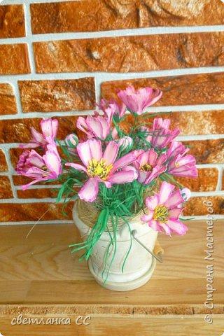 Расцвели цветочки в ночь сегодня фото 2