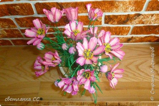 Расцвели цветочки в ночь сегодня фото 3