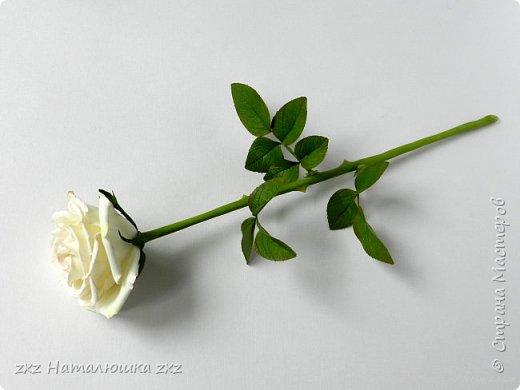 """Здравствуйте,дорогие Мастера и Мастерицы)!!Ох,как же давно я здесь не была...А за это время я,как и большинство)),успела """"заболеть"""" фоамираном))!!!И вот хочу показать вам свои розочки).Все розы сделаны из иранского фоамирана,тонировка масляной пастелью,стебли из полимерной глины,листья - фоамиран.Розочки делала по МК Александры Троицкой! фото 8"""