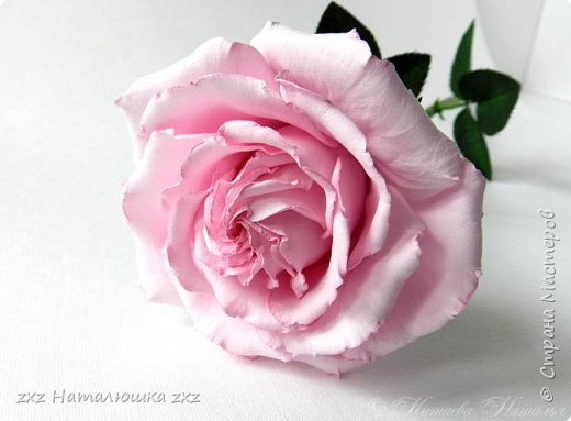 """Здравствуйте,дорогие Мастера и Мастерицы)!!Ох,как же давно я здесь не была...А за это время я,как и большинство)),успела """"заболеть"""" фоамираном))!!!И вот хочу показать вам свои розочки).Все розы сделаны из иранского фоамирана,тонировка масляной пастелью,стебли из полимерной глины,листья - фоамиран.Розочки делала по МК Александры Троицкой! фото 10"""