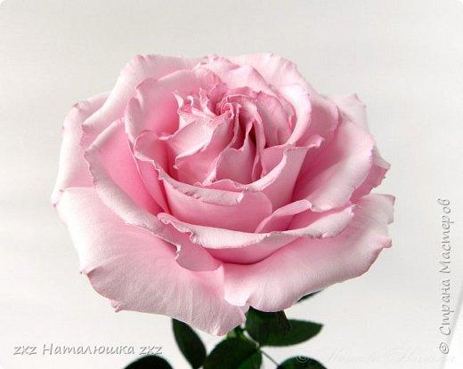 """Здравствуйте,дорогие Мастера и Мастерицы)!!Ох,как же давно я здесь не была...А за это время я,как и большинство)),успела """"заболеть"""" фоамираном))!!!И вот хочу показать вам свои розочки).Все розы сделаны из иранского фоамирана,тонировка масляной пастелью,стебли из полимерной глины,листья - фоамиран.Розочки делала по МК Александры Троицкой! фото 11"""