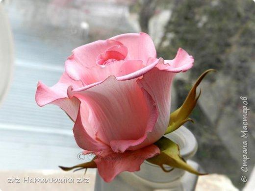 """Здравствуйте,дорогие Мастера и Мастерицы)!!Ох,как же давно я здесь не была...А за это время я,как и большинство)),успела """"заболеть"""" фоамираном))!!!И вот хочу показать вам свои розочки).Все розы сделаны из иранского фоамирана,тонировка масляной пастелью,стебли из полимерной глины,листья - фоамиран.Розочки делала по МК Александры Троицкой! фото 6"""