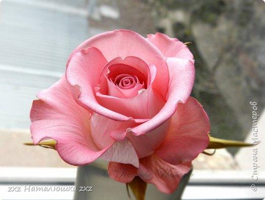 """Здравствуйте,дорогие Мастера и Мастерицы)!!Ох,как же давно я здесь не была...А за это время я,как и большинство)),успела """"заболеть"""" фоамираном))!!!И вот хочу показать вам свои розочки).Все розы сделаны из иранского фоамирана,тонировка масляной пастелью,стебли из полимерной глины,листья - фоамиран.Розочки делала по МК Александры Троицкой! фото 5"""