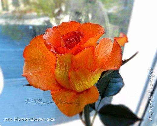"""Здравствуйте,дорогие Мастера и Мастерицы)!!Ох,как же давно я здесь не была...А за это время я,как и большинство)),успела """"заболеть"""" фоамираном))!!!И вот хочу показать вам свои розочки).Все розы сделаны из иранского фоамирана,тонировка масляной пастелью,стебли из полимерной глины,листья - фоамиран.Розочки делала по МК Александры Троицкой! фото 1"""
