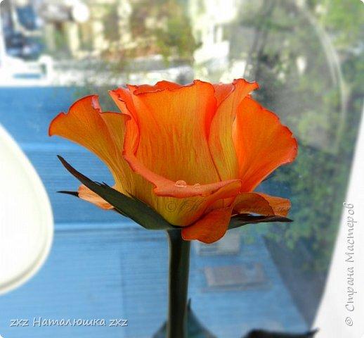 """Здравствуйте,дорогие Мастера и Мастерицы)!!Ох,как же давно я здесь не была...А за это время я,как и большинство)),успела """"заболеть"""" фоамираном))!!!И вот хочу показать вам свои розочки).Все розы сделаны из иранского фоамирана,тонировка масляной пастелью,стебли из полимерной глины,листья - фоамиран.Розочки делала по МК Александры Троицкой! фото 3"""