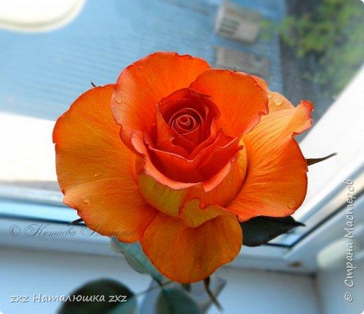 """Здравствуйте,дорогие Мастера и Мастерицы)!!Ох,как же давно я здесь не была...А за это время я,как и большинство)),успела """"заболеть"""" фоамираном))!!!И вот хочу показать вам свои розочки).Все розы сделаны из иранского фоамирана,тонировка масляной пастелью,стебли из полимерной глины,листья - фоамиран.Розочки делала по МК Александры Троицкой! фото 4"""
