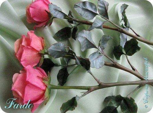 Давно не лепила розы, а тут вот дорвалась :-) . Один из моих любимых сортов роз. фото 2