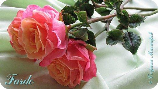 Давно не лепила розы, а тут вот дорвалась :-) . Один из моих любимых сортов роз. фото 3