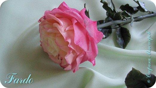 Давно не лепила розы, а тут вот дорвалась :-) . Один из моих любимых сортов роз. фото 6
