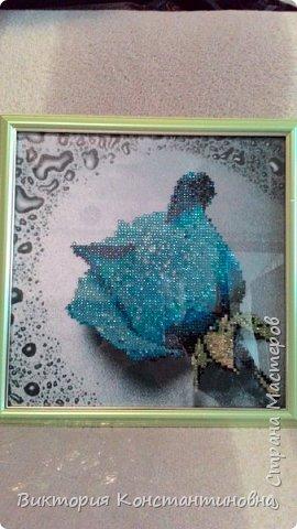картины из алмазной мозайки фото 2