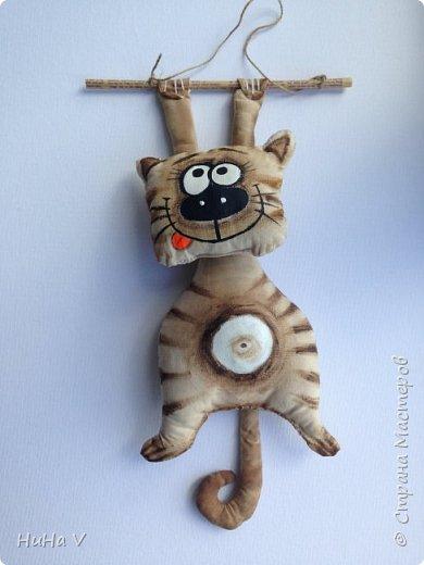 Котик) фото 2
