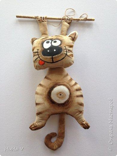 Котик) фото 3