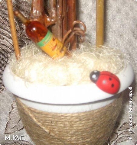 Виноградный топик) фото 2