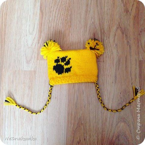 Всем привет! Хочу поделиться своим новым увлечением , а именно: вязание нарядов для животных.  фото 18