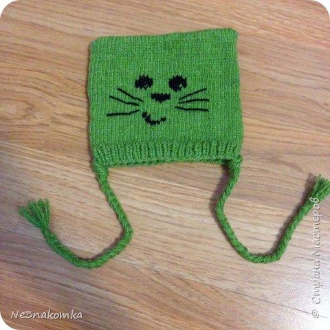 Всем привет! Хочу поделиться своим новым увлечением , а именно: вязание нарядов для животных.  фото 19