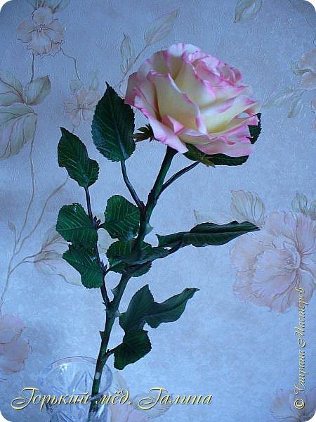 Всем доброго времени суток!) Сегодня я с очередными розами, фотографий много). Хотелось показать со всех ракурсов очередные творения очумелых ручек)  Белая роза. На самом деле она не совсем белая, добавила к белилам совсем капельку лимонно-желтого для еле заметного оттенка. Если лепить только с белилами получается не естественный цвет. Общая высота примерно 58 см, форма бутона - полураскрытый.  фото 15