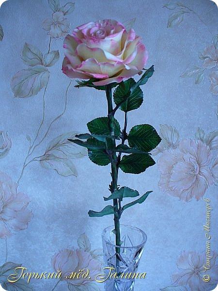 Всем доброго времени суток!) Сегодня я с очередными розами, фотографий много). Хотелось показать со всех ракурсов очередные творения очумелых ручек)  Белая роза. На самом деле она не совсем белая, добавила к белилам совсем капельку лимонно-желтого для еле заметного оттенка. Если лепить только с белилами получается не естественный цвет. Общая высота примерно 58 см, форма бутона - полураскрытый.  фото 19