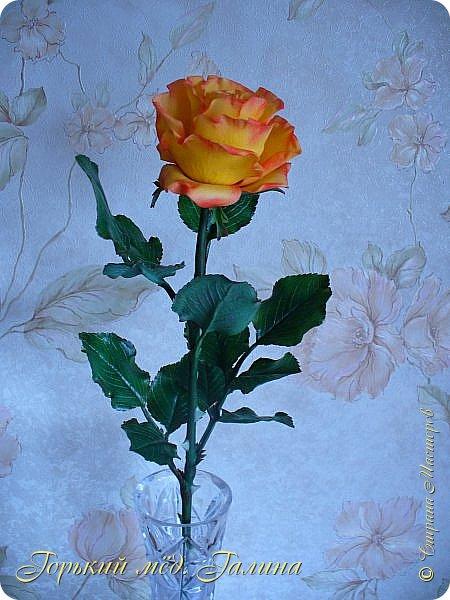 Всем доброго времени суток!) Сегодня я с очередными розами, фотографий много). Хотелось показать со всех ракурсов очередные творения очумелых ручек)  Белая роза. На самом деле она не совсем белая, добавила к белилам совсем капельку лимонно-желтого для еле заметного оттенка. Если лепить только с белилами получается не естественный цвет. Общая высота примерно 58 см, форма бутона - полураскрытый.  фото 24