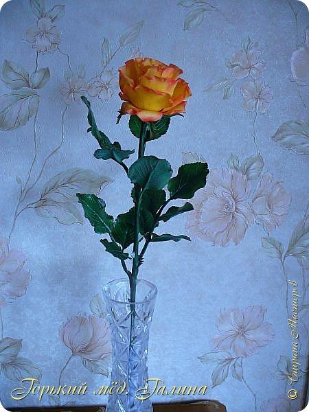 Всем доброго времени суток!) Сегодня я с очередными розами, фотографий много). Хотелось показать со всех ракурсов очередные творения очумелых ручек)  Белая роза. На самом деле она не совсем белая, добавила к белилам совсем капельку лимонно-желтого для еле заметного оттенка. Если лепить только с белилами получается не естественный цвет. Общая высота примерно 58 см, форма бутона - полураскрытый.  фото 25