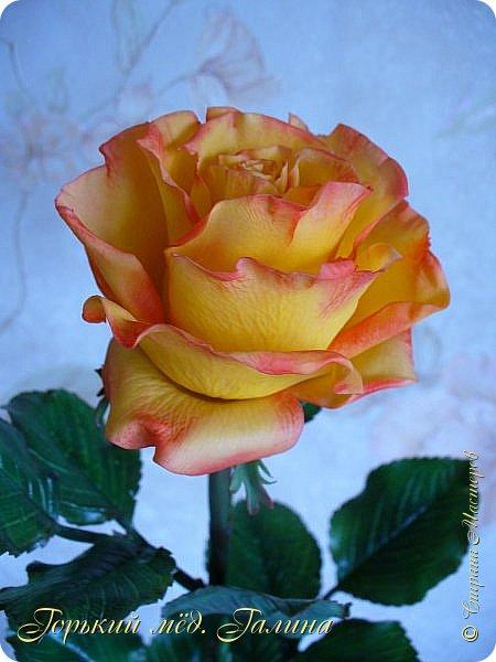 Всем доброго времени суток!) Сегодня я с очередными розами, фотографий много). Хотелось показать со всех ракурсов очередные творения очумелых ручек)  Белая роза. На самом деле она не совсем белая, добавила к белилам совсем капельку лимонно-желтого для еле заметного оттенка. Если лепить только с белилами получается не естественный цвет. Общая высота примерно 58 см, форма бутона - полураскрытый.  фото 26