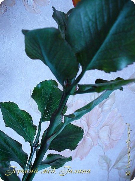 Всем доброго времени суток!) Сегодня я с очередными розами, фотографий много). Хотелось показать со всех ракурсов очередные творения очумелых ручек)  Белая роза. На самом деле она не совсем белая, добавила к белилам совсем капельку лимонно-желтого для еле заметного оттенка. Если лепить только с белилами получается не естественный цвет. Общая высота примерно 58 см, форма бутона - полураскрытый.  фото 31