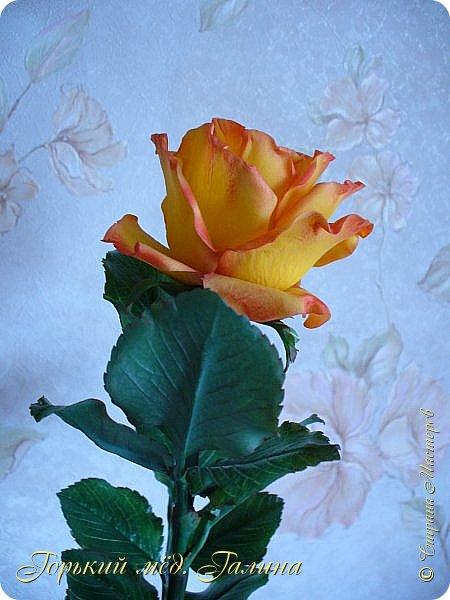 Всем доброго времени суток!) Сегодня я с очередными розами, фотографий много). Хотелось показать со всех ракурсов очередные творения очумелых ручек)  Белая роза. На самом деле она не совсем белая, добавила к белилам совсем капельку лимонно-желтого для еле заметного оттенка. Если лепить только с белилами получается не естественный цвет. Общая высота примерно 58 см, форма бутона - полураскрытый.  фото 29