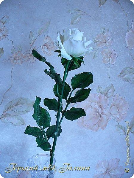 Всем доброго времени суток!) Сегодня я с очередными розами, фотографий много). Хотелось показать со всех ракурсов очередные творения очумелых ручек)  Белая роза. На самом деле она не совсем белая, добавила к белилам совсем капельку лимонно-желтого для еле заметного оттенка. Если лепить только с белилами получается не естественный цвет. Общая высота примерно 58 см, форма бутона - полураскрытый.  фото 4