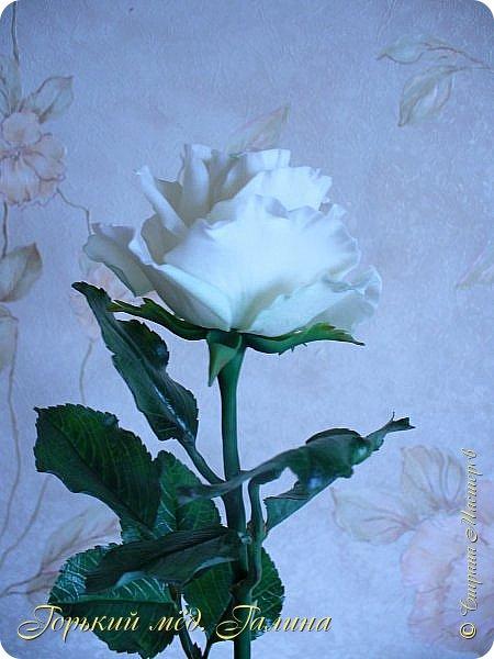 Всем доброго времени суток!) Сегодня я с очередными розами, фотографий много). Хотелось показать со всех ракурсов очередные творения очумелых ручек)  Белая роза. На самом деле она не совсем белая, добавила к белилам совсем капельку лимонно-желтого для еле заметного оттенка. Если лепить только с белилами получается не естественный цвет. Общая высота примерно 58 см, форма бутона - полураскрытый.  фото 6