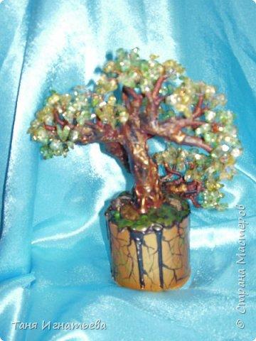 Сделала вот такой зелёный бонсай из каменного скола. Делала давно, поэтому качество фоток не очень. фото 2